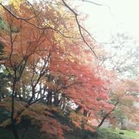 秋の校外学習♪