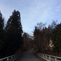 冬晴れの東武橋