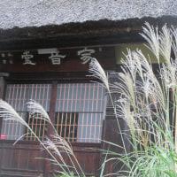 茅葺の寺にはススキが似合う