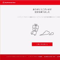 Nintendo Switch 購入 マリカのために _本日の装備