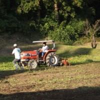 登米市4Hクラブ、そば収穫
