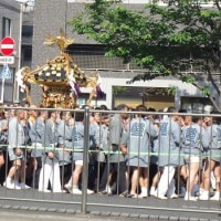 三社祭~初夏ですね
