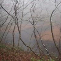 霧の乙和池:うっすらと見える浮島。