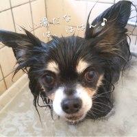 お風呂〜♪