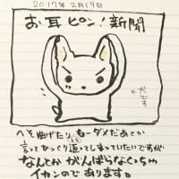 お耳ピン!新聞 2月19日夕刊