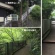 箱根あじさい電車 2