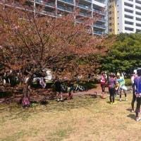 稲毛海浜公園への走行会プラスアルファお疲れさまでした!