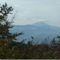 三頭山から笹尾根縦走 2