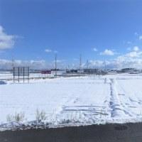 初雪(Ⅱ)