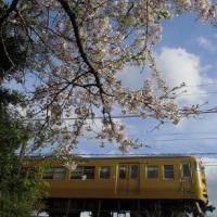 春の東北地方を乗り鉄 岩泉線に乗車 1990-04-29