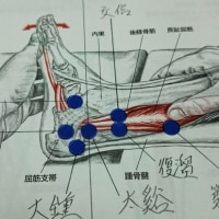 踏:東洋医学的解釈