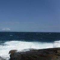 ヒラスズキ 上五島 2016 8月 真夏