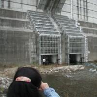 辰巳ダム>現場視察の案内
