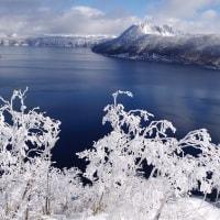 必見!摩周湖の霧氷♪ Ice on tree at Lake Mashu