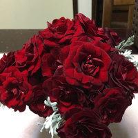 元気をあげる赤い薔薇🌹