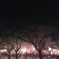 桜散るころ