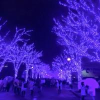 12/11・チエの「青の洞窟」