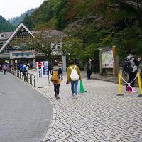 高尾山に行ってきました