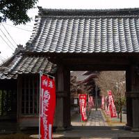 田主丸石垣観音寺と草野つばき園を訪ねる