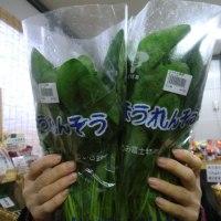 新鮮野菜(^_-)-☆美味しいよ!安いよ!(^^)!