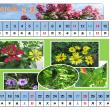 エクセルとワードを使ってカレンダーを作りました。