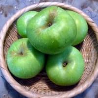 お初な果物…