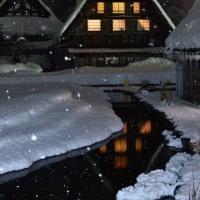 雪舞う白川郷へ。。。⛄️