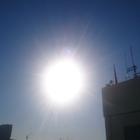 日向ぼっこ。