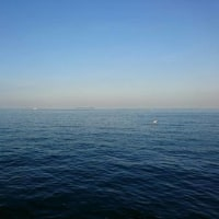 釣り~伊東港~
