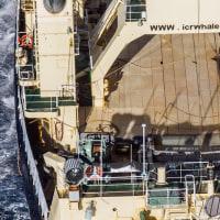 シー・シェパード、調査捕鯨の写真公開。