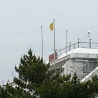 Yellow flag condition, 楽しめました