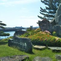 マイルを使って無料航空券で行く屋久島の旅 6日目