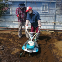 耕耘機の始動方法
