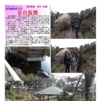散策 「東京北西部-118」 目白庭園