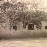 サイババ物語(36)宮殿の王様の巻
