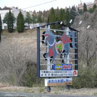 一関市「千厩野草会・雪割り草展」の雪割草 2017年3月25日(土)
