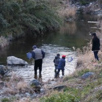 川の生きものさがしなど~里山体験プログラム~