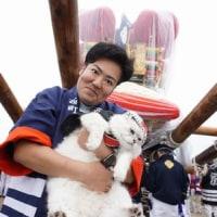 2016 伊予三島秋祭り 港記念公園