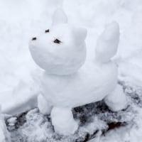 雪かき三昧の一日でした