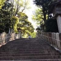 神社と公園に行った