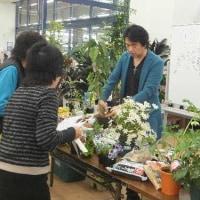 アヤハディオ  春の園芸教室❗  午後のトークショー❗
