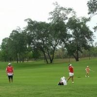 �Ѥ뵤��ʤ�ʤ��ä�����ǯ�Υۥ�� LPGA ��ɽ������