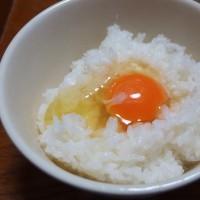 朝食 生卵