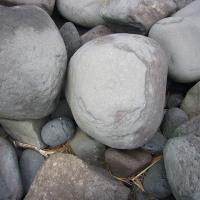 かんのん浜の海岸の石・・・ポットホール/玉石の予備軍