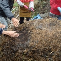 自然菜園スクール (自然堆肥の切り返し、雑穀の脱穀)