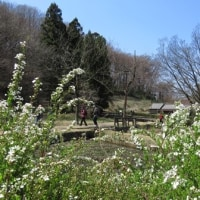 片倉城址公園