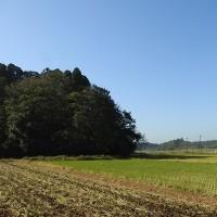 地元の谷地に行ってきました -1/5- (平成28年10月26日)。