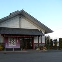 奥州市江刺区「回進堂」のキク(菊) 2016年12月11日(日)