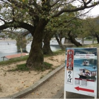 いまさらだけとシリーズ 10月8日 錦帯橋 岩国城②
