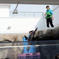 週刊 仙台うみの杜水族館 vol.69